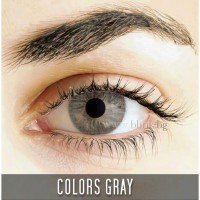 Freshlook colors GRAY